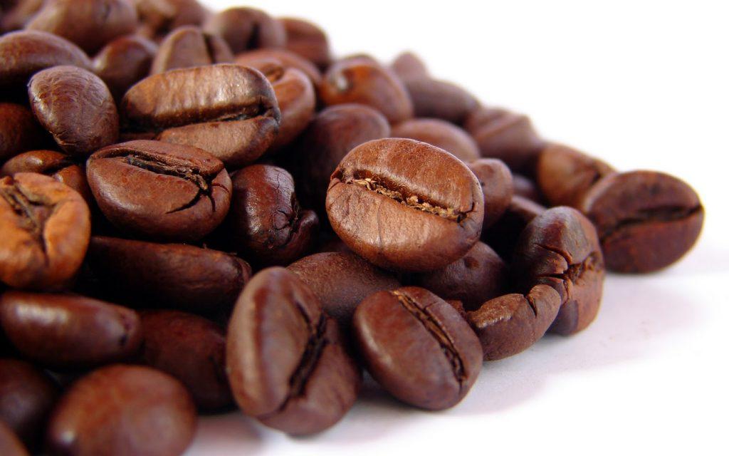 Produksi kopi Bondowoso turun 60 persen akibat hujan