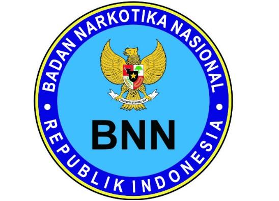 BNN gagalkan penyelundupan sabu-sabu di sepatu wedges