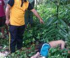 Ditemukan Tidak Bernyawa, Asafati Diduga Jatuh Dari Pohon Pinang