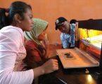 Pengungsi Sinabung Di Siosar Kembangkan Penetasan Telur Puyuh