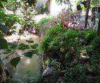 Sekolah MIN Desa Kuala Gunung Butuh Tambahan RKB Dan Bronjong Dipinggir Sungai