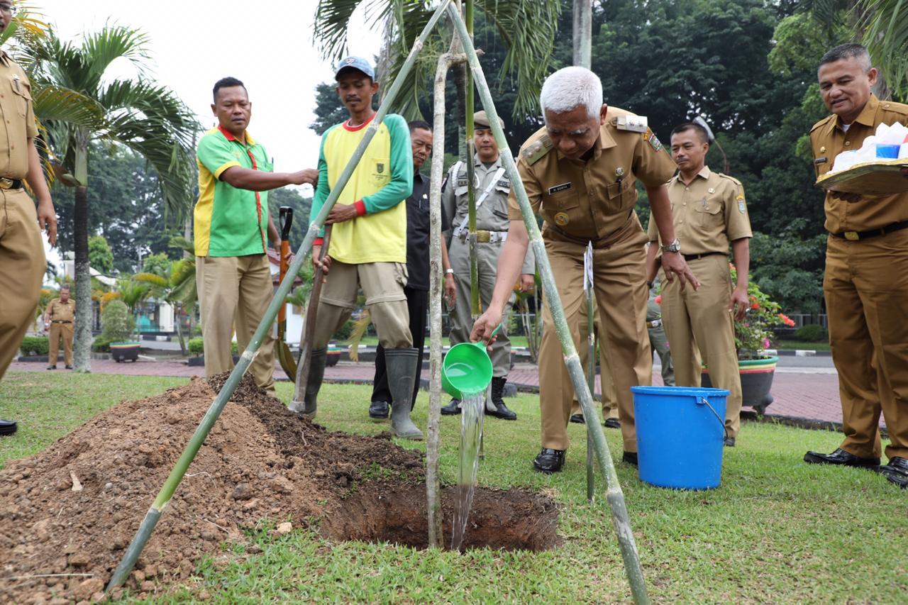 Gerakan Penghijauan, Pemkab Asahan Tanam Pohon