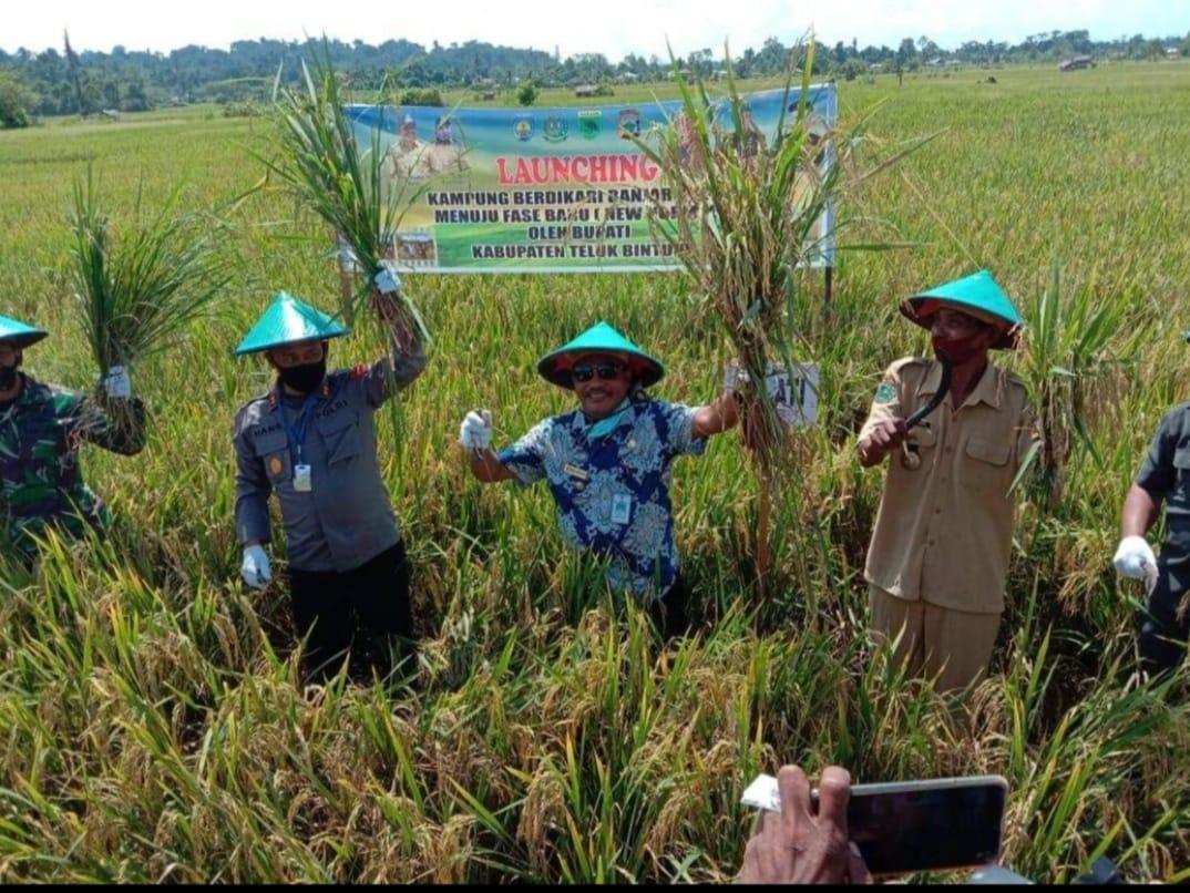 Dukung Ketahanan Pangan,Bupati Launching Kampung Berdikari Menuju New Normal