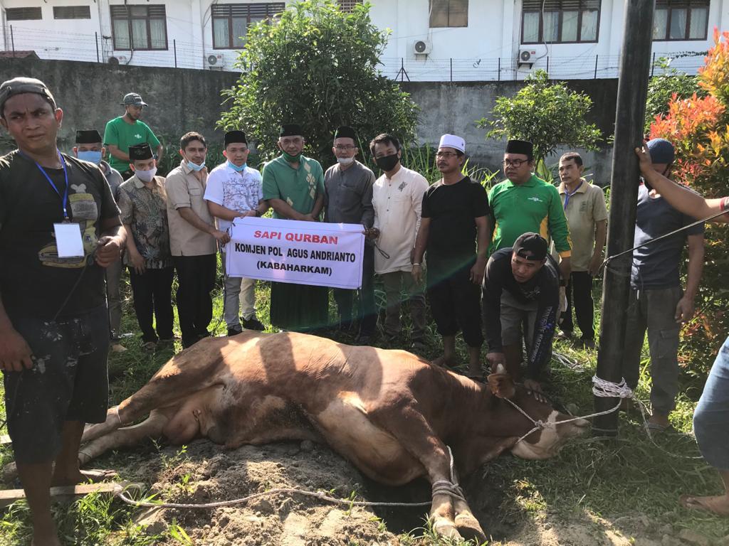 Serahkan Sapi Kurban ke PWNU Sumut, Kabaharkam Polri: Wujud Syukur kepada Sang Khalik