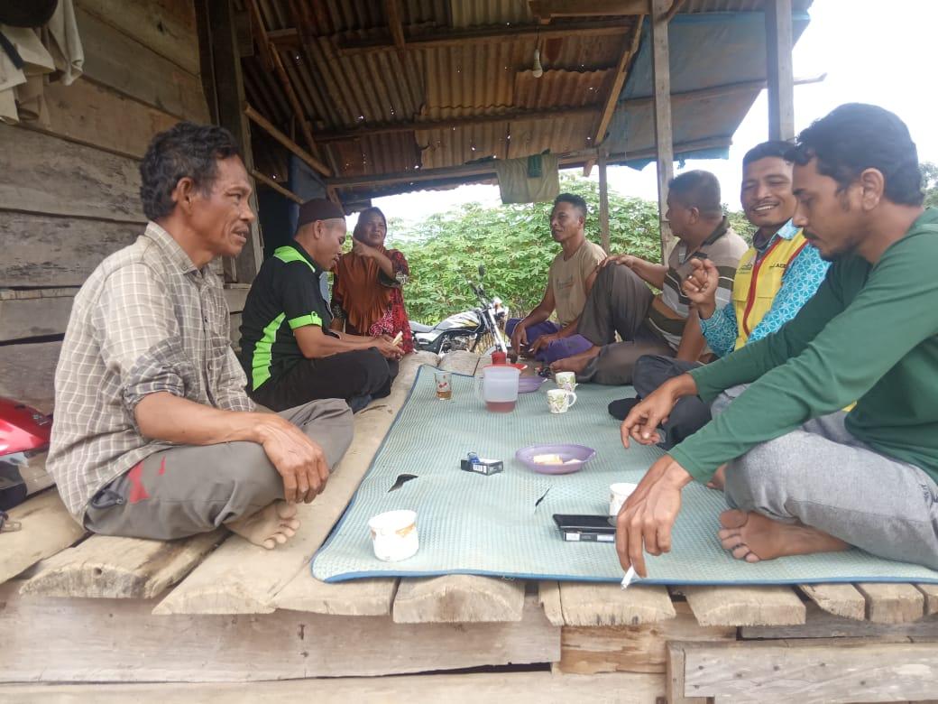 Petani Aceh Timur Mengeluh Harga Jagung Anjlok