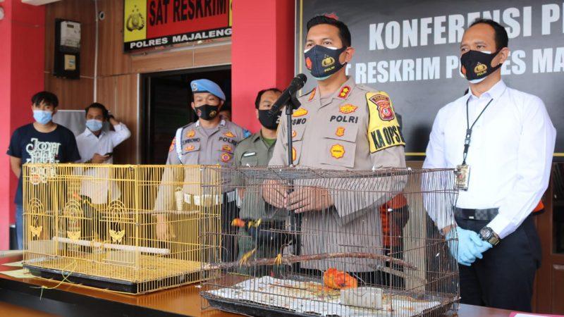 Satreskrim Polres Majalengka Ungkap Pelaku Penjual Satwa Dilindungi