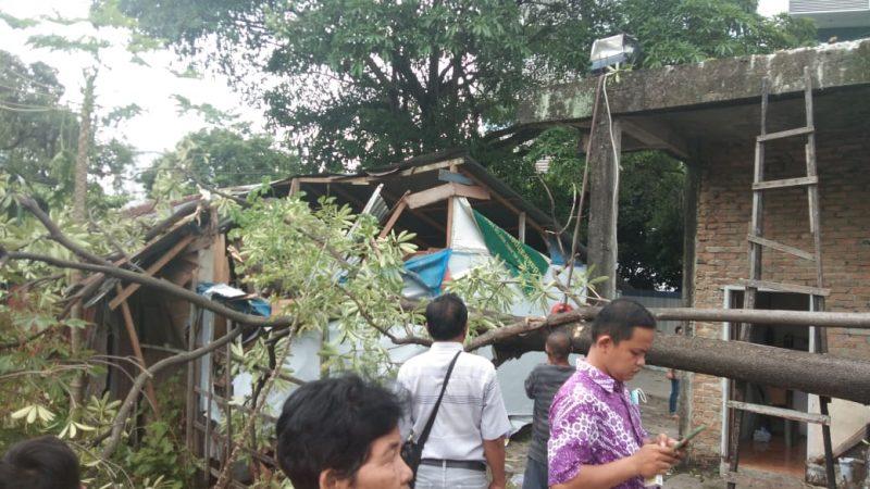 Pasca Diberitakan, Kadis Pertamanan Medan Janji Pohon Yang Menimpa Warung Warga Di Jalan Sukamulia Akan Ditebang