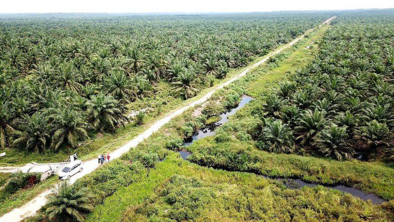 PGN Dorong Perekonomian Daerah dan Nasional di Proyek Pipa Minyak Rokan