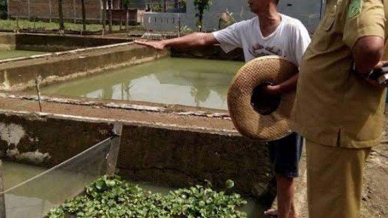 Ketua DPRD Kota Medan Minta Pemko Perhatikan Nasib ke-48 PHL di Dinas Pertanian dan Perikanan Medan