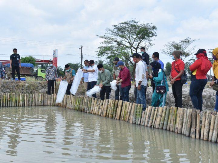 Zahir Berikan Bantuan 15 Ribu Ekor Benih Ikan Gurami Dan Nila
